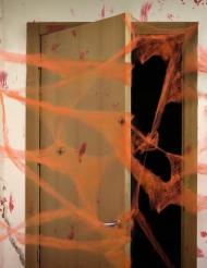 Oranje spinnenweb met spinnen