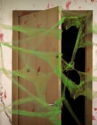 Groene spinnenweb decoratie met spinnen