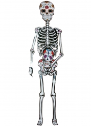 Kartonnen Dia de los Muertos skelet decoratie