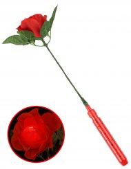 Lichtgevende rode roos