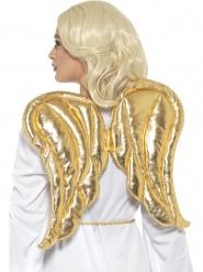 Vleugels van goudkleurig stof voor volwassenen