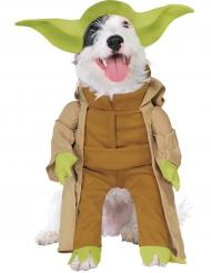 Meester Yoda™ honden kostuum