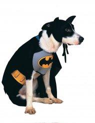 Batman™ hondenkostuum