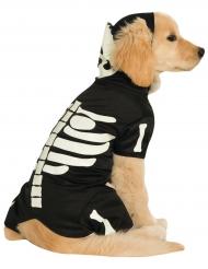 Fosforescerend skelet hondenkostuum