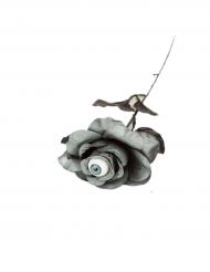 Grijze roos met oogbal