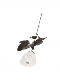 Witte roos met oogbal
