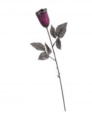 Zwarte roos met paarse glitters
