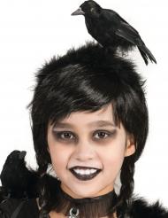 Raaf haarband voor volwassenen en kinderen