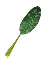 Groen blaadje 74 cm