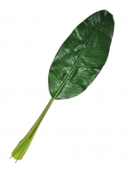 Tropisch Hawai blad 90 cm