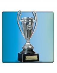 Zilverkleurige trofee