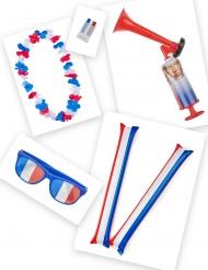 Franse supporter accessoire set
