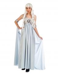 Lichtblauwe edele prinses kostuum voor vrouwen