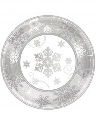 8 kleine sneeuwvlokken borden