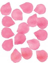 288 roze rozenblaadjes