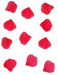 288 rode rozenblaadjes