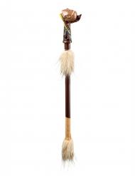Indianen regendans stok