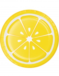 8 kleine citroen borden