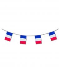 Plastic Frankrijk slinger