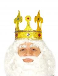 Glitter koning kroon met nep juwelen voor volwassenen