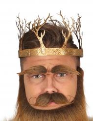 Goudkleurige middeleeuwse koning kroon voor volwassen