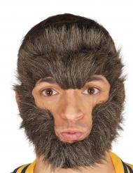 Weerwolf gezicht haren voor volwassenen