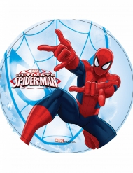 Ultimate Spider-Man eetbare schijf