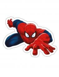 Eetbaar taart plaatje Spiderman™