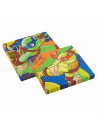 20 Ninja Turtles™ servetten