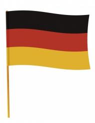 Duitse vlag met stok