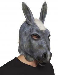 Latex grijze ezel masker voor volwassenen