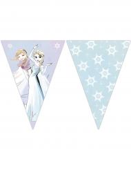 Frozen™ vlaggenlijn