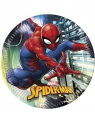 8 kartonnen Spiderman™ bordjes