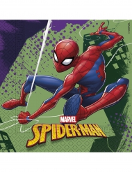 20 Spiderman™ servetten