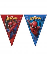 Spiderman™ vlaggenslinger