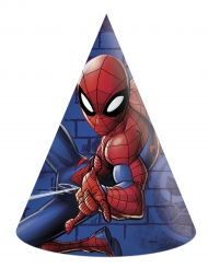 6 Spiderman™ feesthoeden