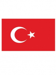 Turkse supportersvlag