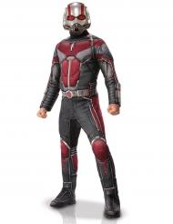 Luxe rood en grijs Ant-Man™ kostuum voor volwassenen