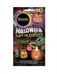 5 Illooms™ Led ballonnen