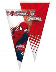 10 Spiderman™ cadeauzakjes
