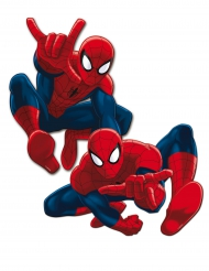 2 kartonnen Spiderman™ muurdecoraties