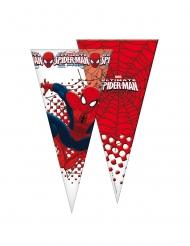 6 Spider-Man™ feestzakjes