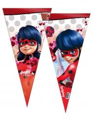 6 grote Ladybug™ feestzakjes