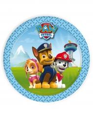 8 kleine kartonnen blauwe Paw Patrol™ borden