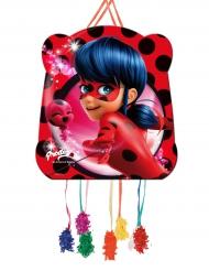 Kleine pinata Miraculous Ladybug™