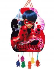 Ladybug™ pinata 46 cm