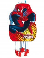 Ultimate Spiderman™ pinata