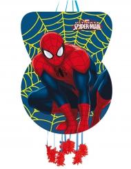 Kartonnen Spider Man™ pinata
