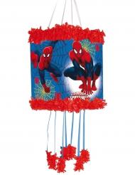 Rood blauwe Spiderman™ pinata
