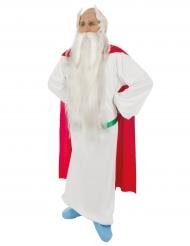 Asterix en Obelix™ Panoramix™ kostuum voor volwassenen
